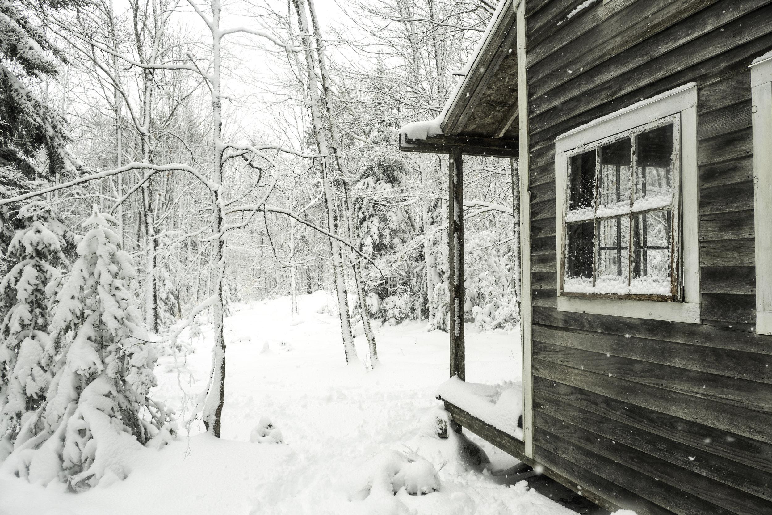 20180308_untitled_SnowStormBackyard_DSCF4451.jpg