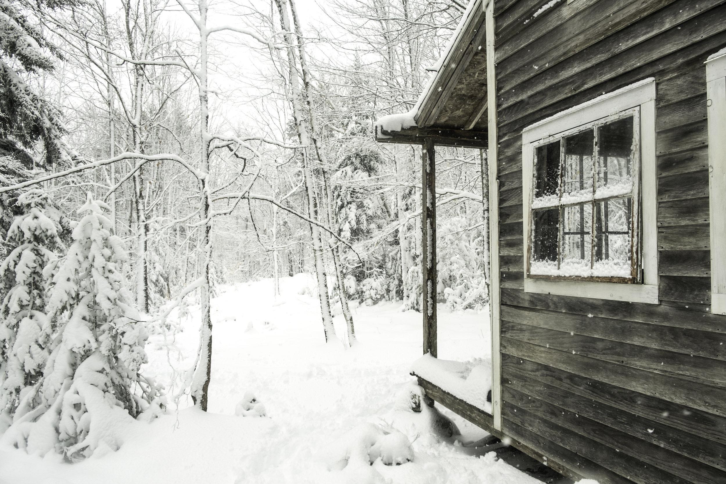 25_20180308_untitled_SnowStormBackyard_DSCF4451.jpg