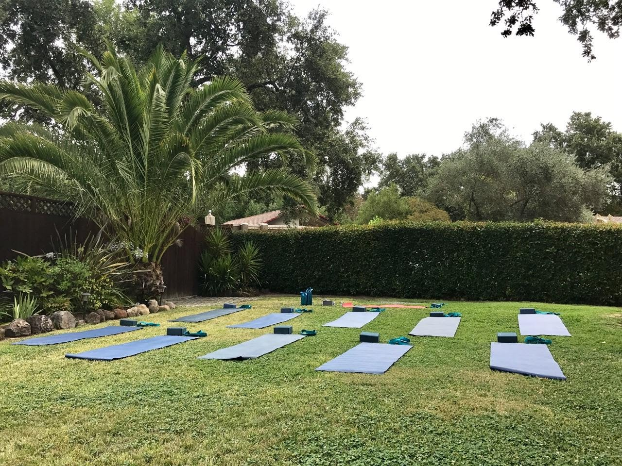 Schedule a private group yoga class for your backyard!