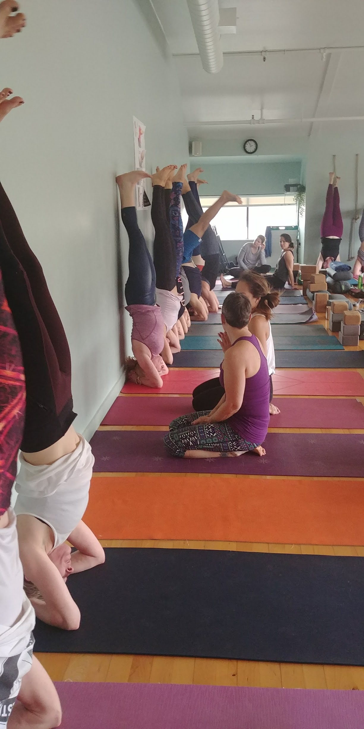 Get in touch with us for all your yoga needs - including wellness goals, private retreats, and workshops.