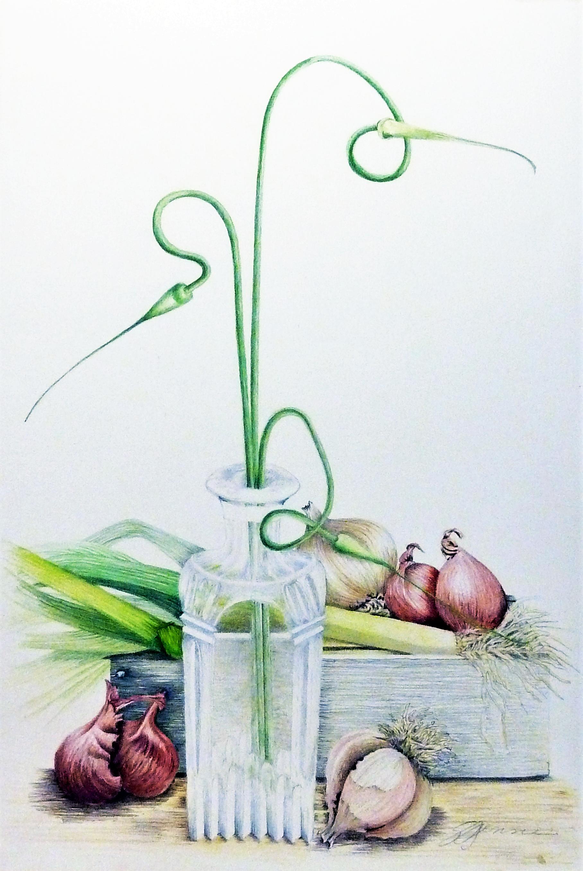 copy garlic.png