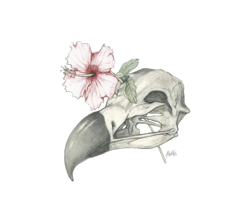 Vulture Skull & Flower