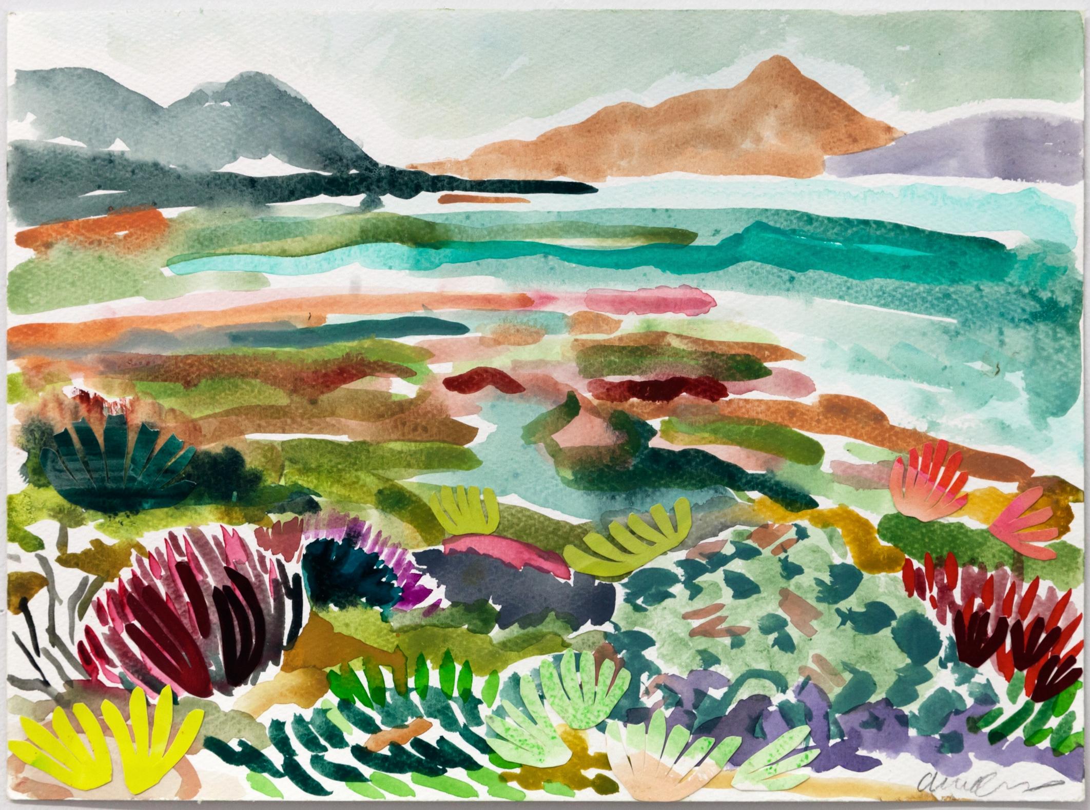 Fynbos Landscape iii