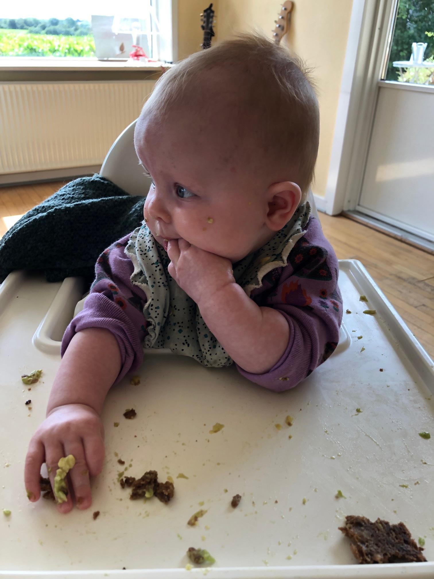 Her ses en smags-gangsta in action. Hun er knapt 5 måneder gammel og vil allerhelst selv styre hvornår og hvordan maden kommer ind i munden. Vi tror på at læring også sker igennem at 'lege med maden' - eneste ulempe er at det koster lidt ekstra på vaskekontoen :-)