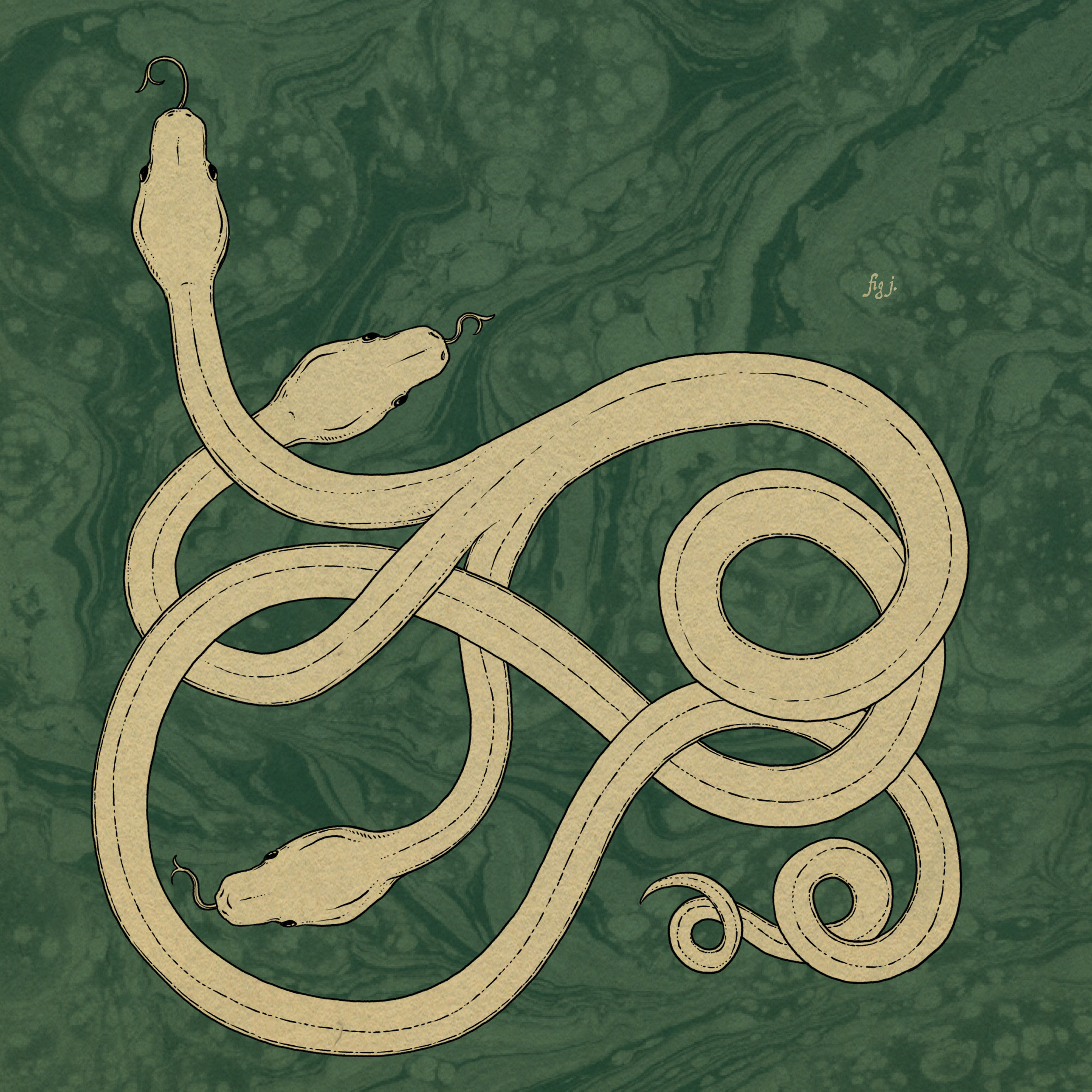 Runespoor | Taken from the Pottermore website.