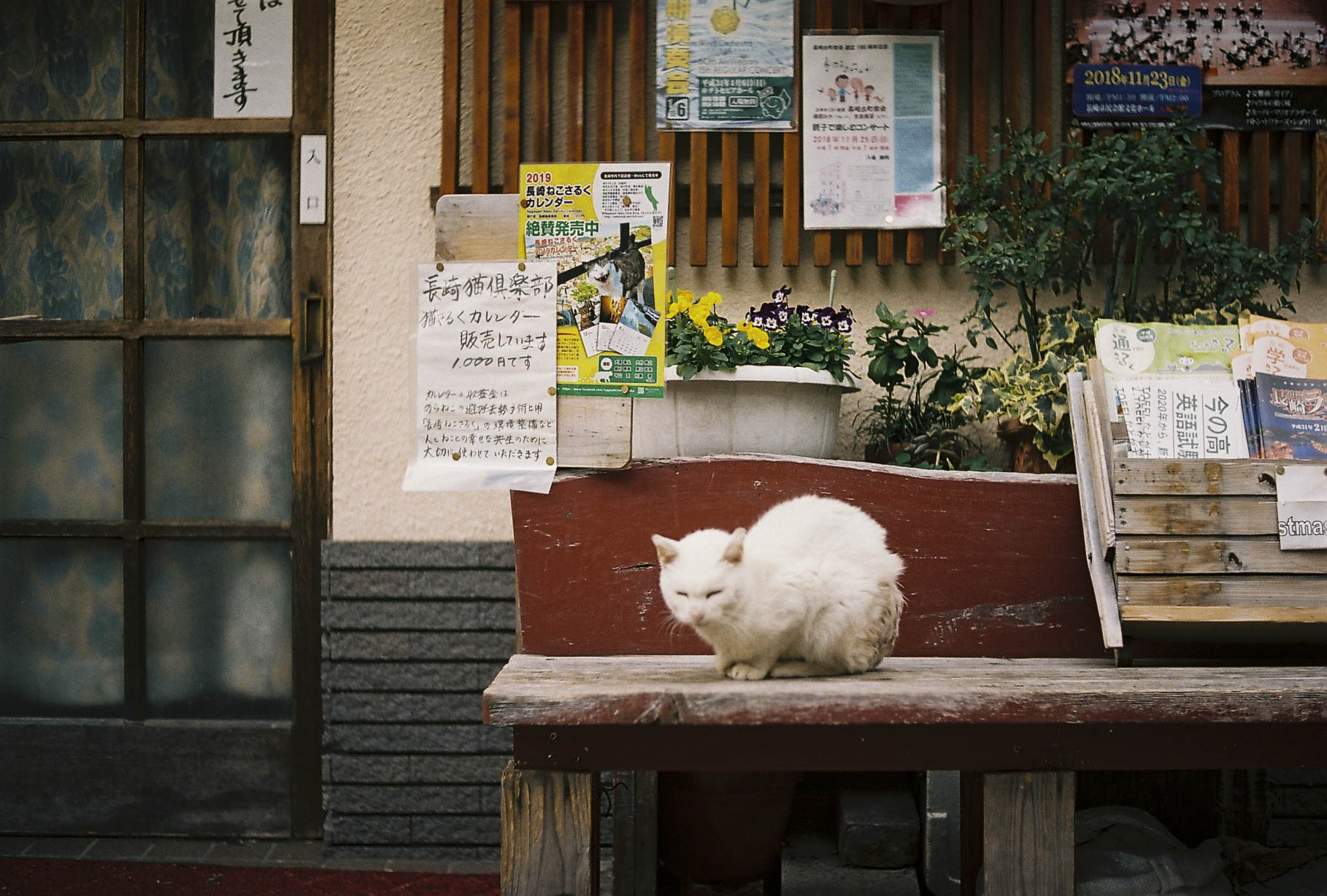 BDAY_LA_JAPAN_SNAP_LQ_170.JPG