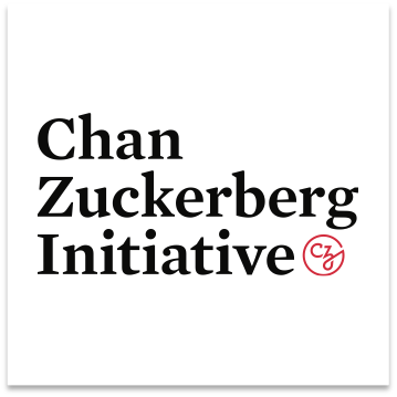 <strong>Chan Zuckerberg Initiative<span>Strategy and Policy Analysis</span></strong>