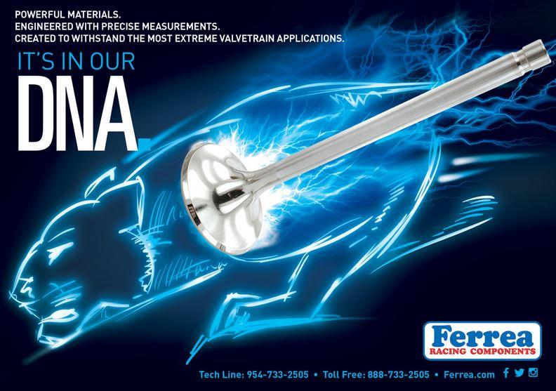 Ferrea Ad.jpg