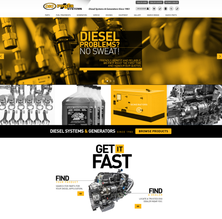 DSG home page small.png