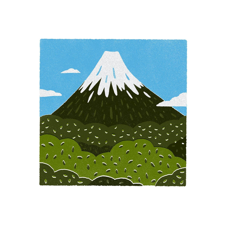 fuji-san-web.jpg