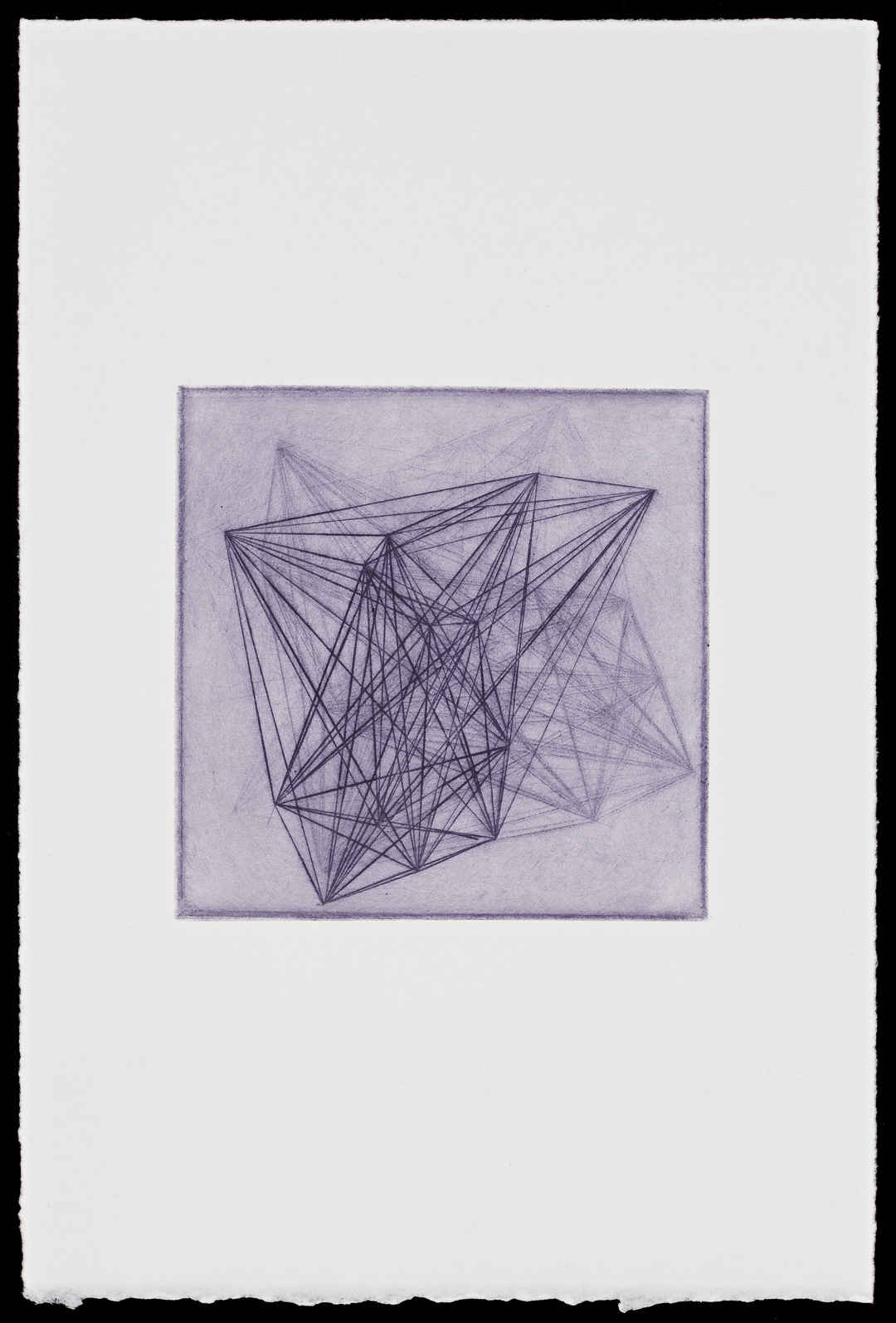 Organic Form 3  (2019), drypoint print on paper, 29 x 19 cm, edition of 6, photo by Document Photography