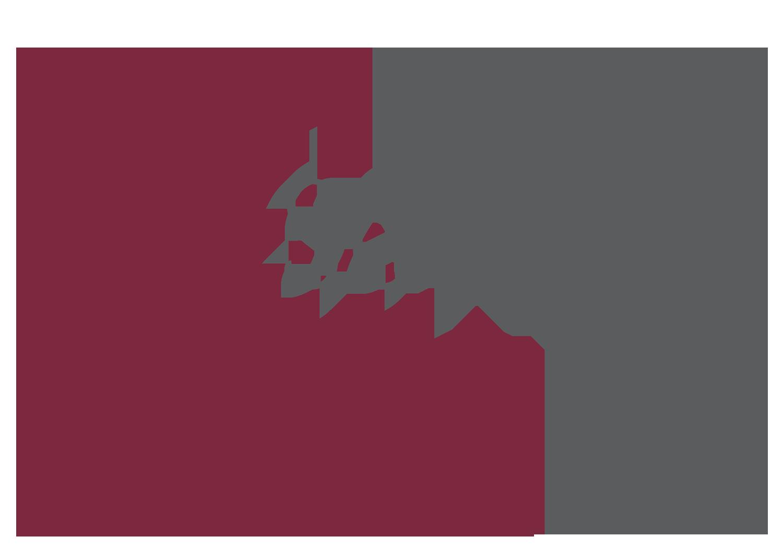 Services Graphic copy.png