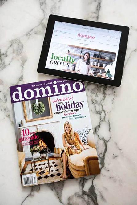 domino_launch_2.jpg