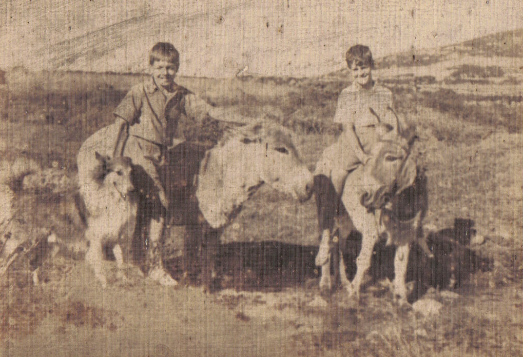 "Walter LLoyd (left) stands beside ""Darling"" and shetland sheepdog ""Leuth"" with Rex Whelan on ""Dixie"" at Zennor, Cornwall"