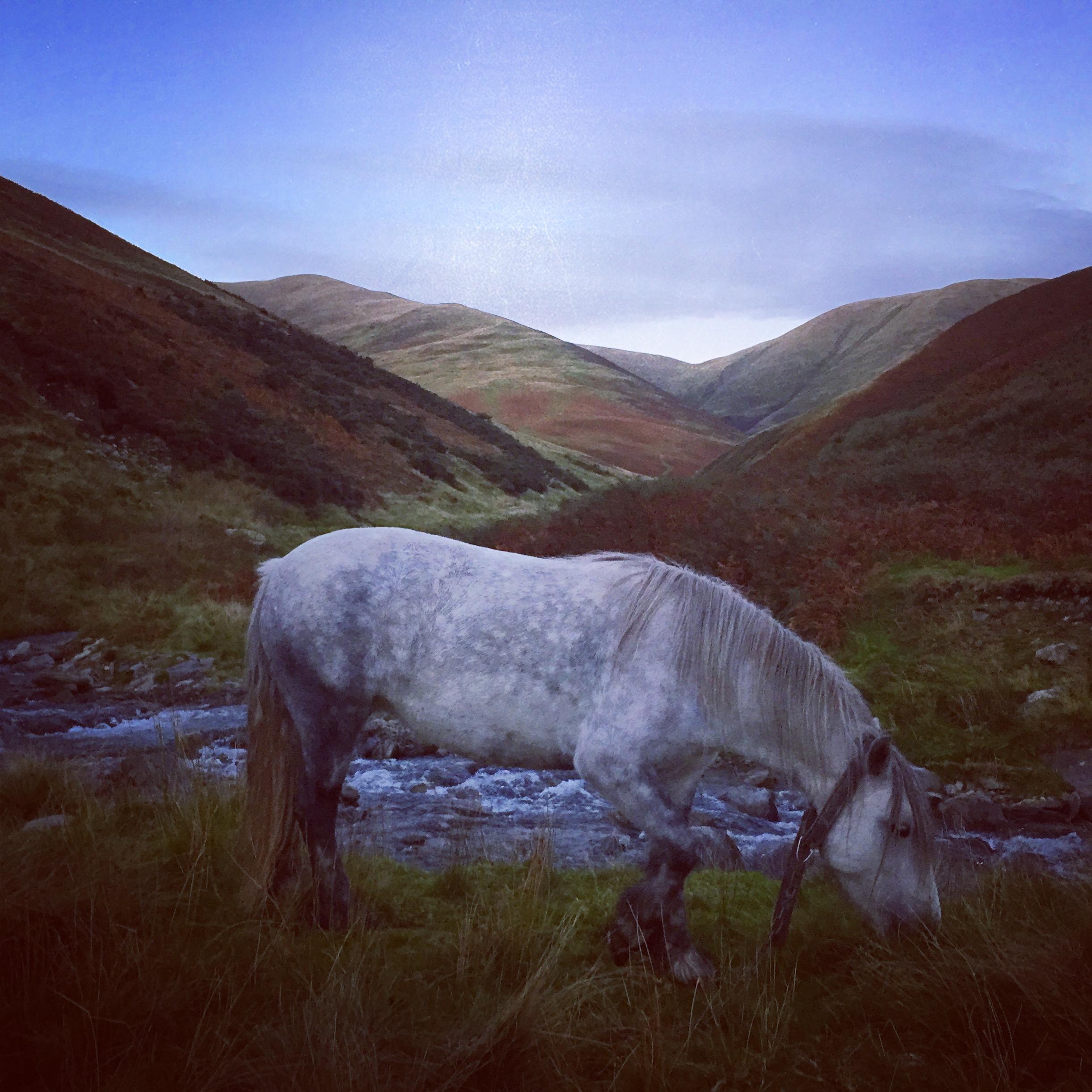 Hades Hill Fay at the foot of White Fell Head (photo Tom LLoyd)