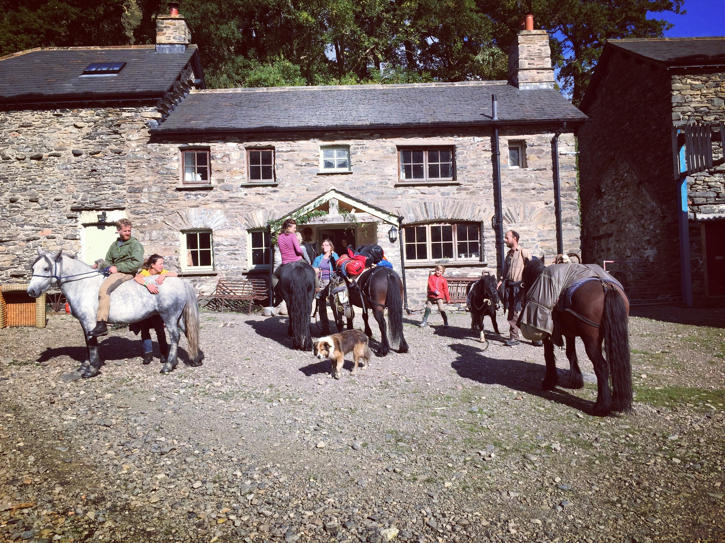 Return to Low Borrowdale farm (photo Tom LLoyd)