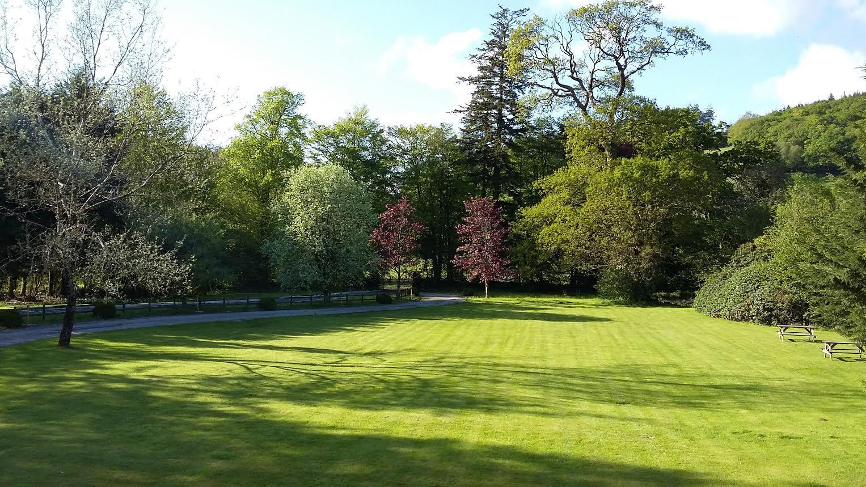 Front garden May 2016.jpg