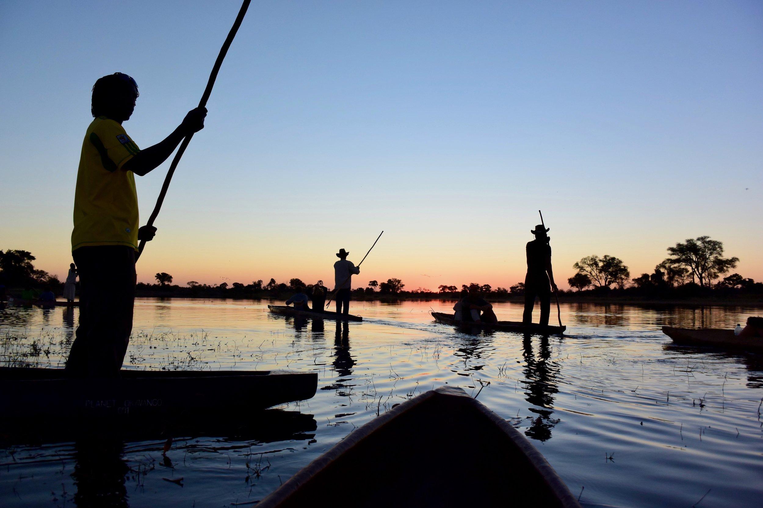 Okavango Delta -