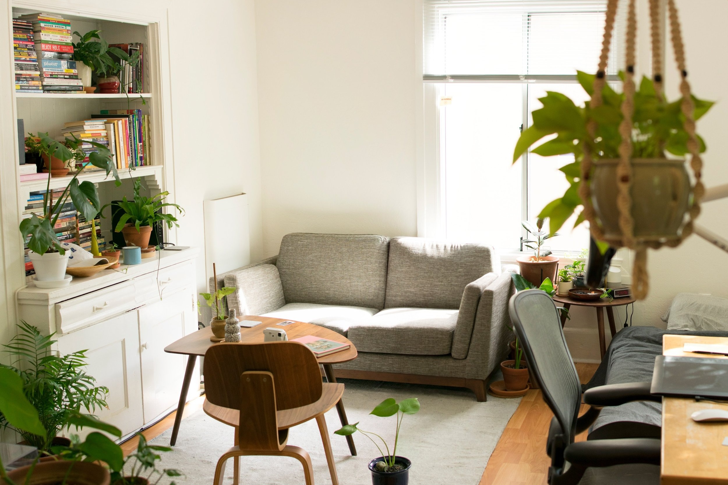 chicago-apartment-hanging-plant-copper-light-fixture-living-room.png