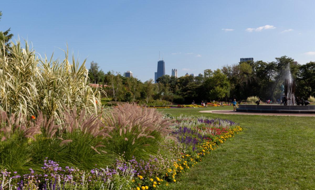 LincolnPark_Chicago_IL_5be6131f05cbb.jpg