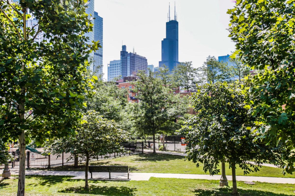FultonRiverDistrict_Chicago_IL_5b69f5471a380.jpg