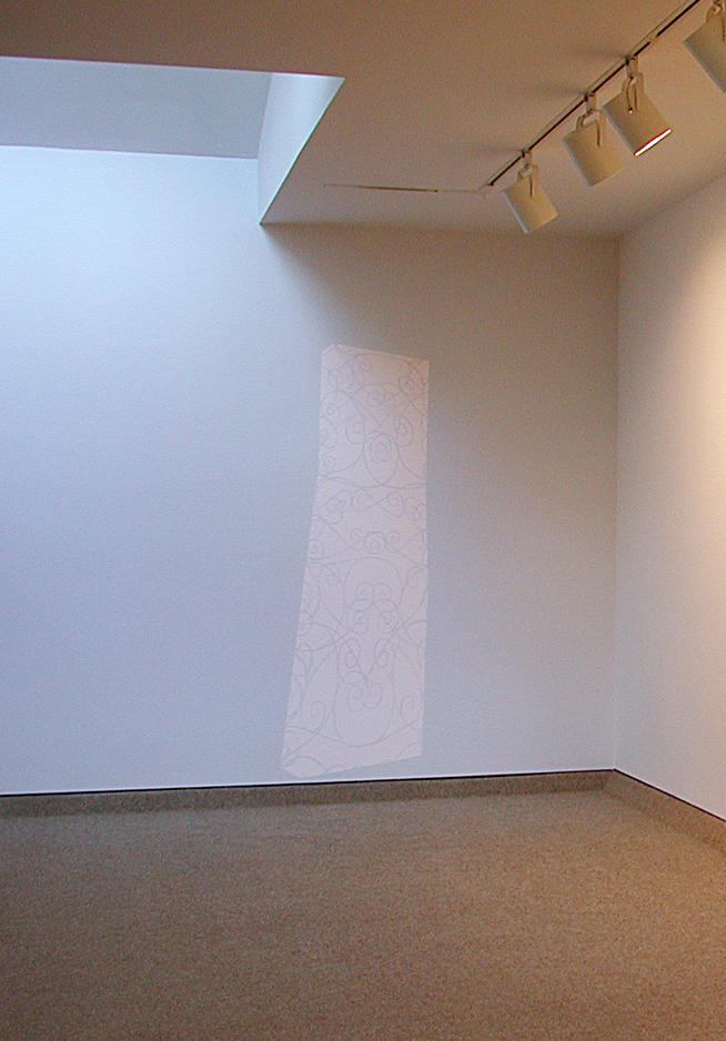 Kate Shepherd, latex on wall, Barbara Krakow Gallery, Boston, 2001.jpg