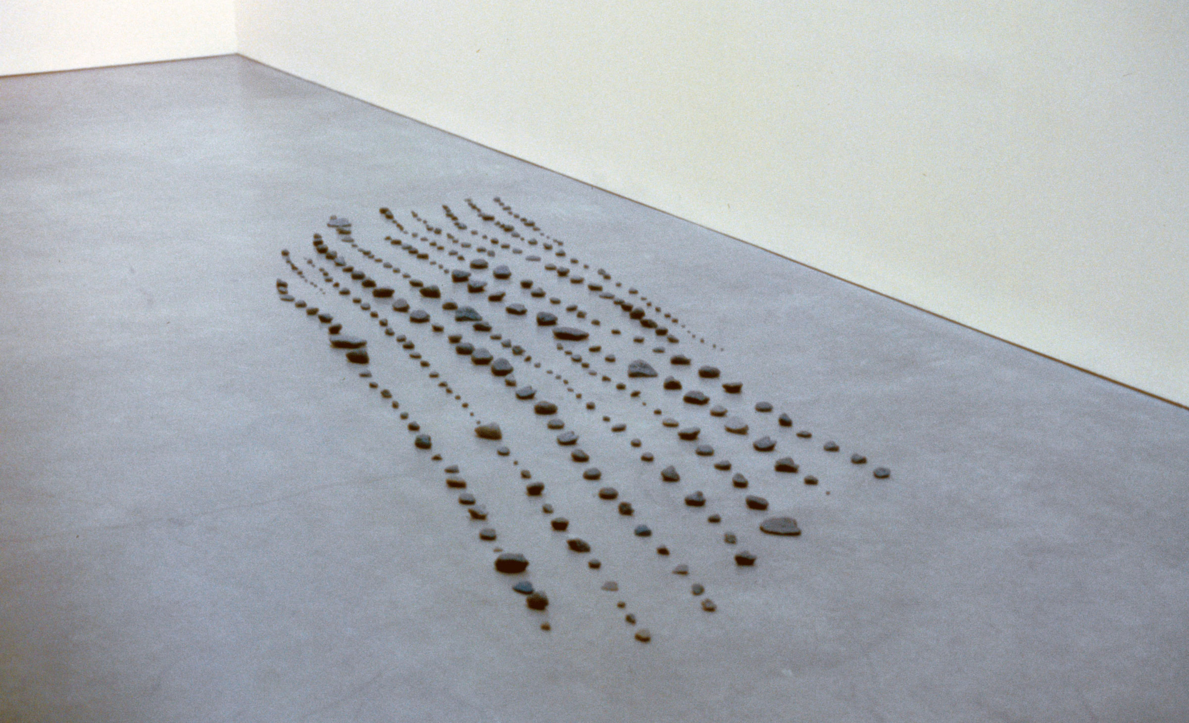 """Installation View, """"Trace"""", curated by Ian Berry,Bard Center for Curatorial Studies, Bard College, Annandale-on-Hudson, New York"""
