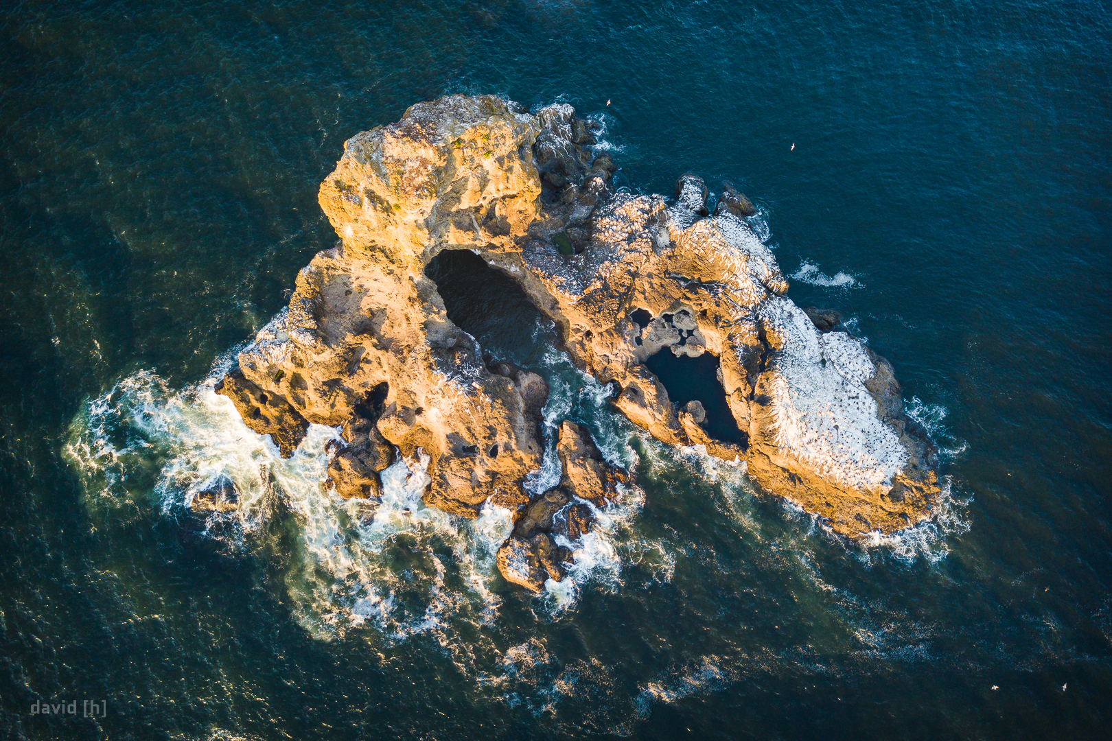 A rock formation in front of the coast at Ecola State Park - complete with seagull colony and tunnel!