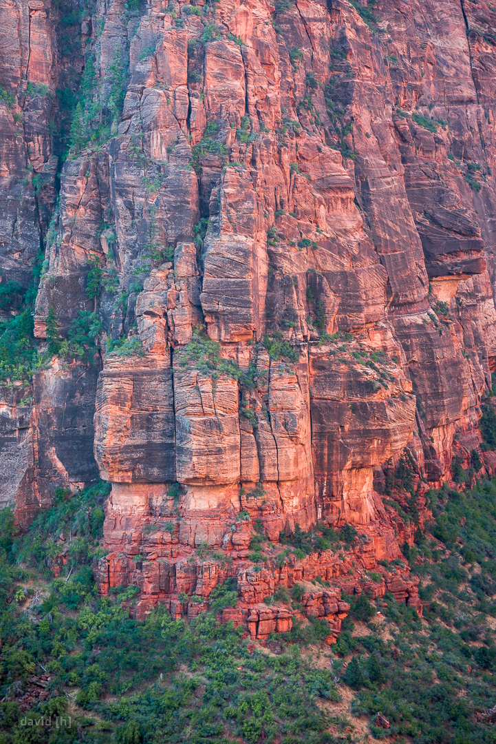 The red cliffs of Zion Canyon as seen from the Angels Landing trail.