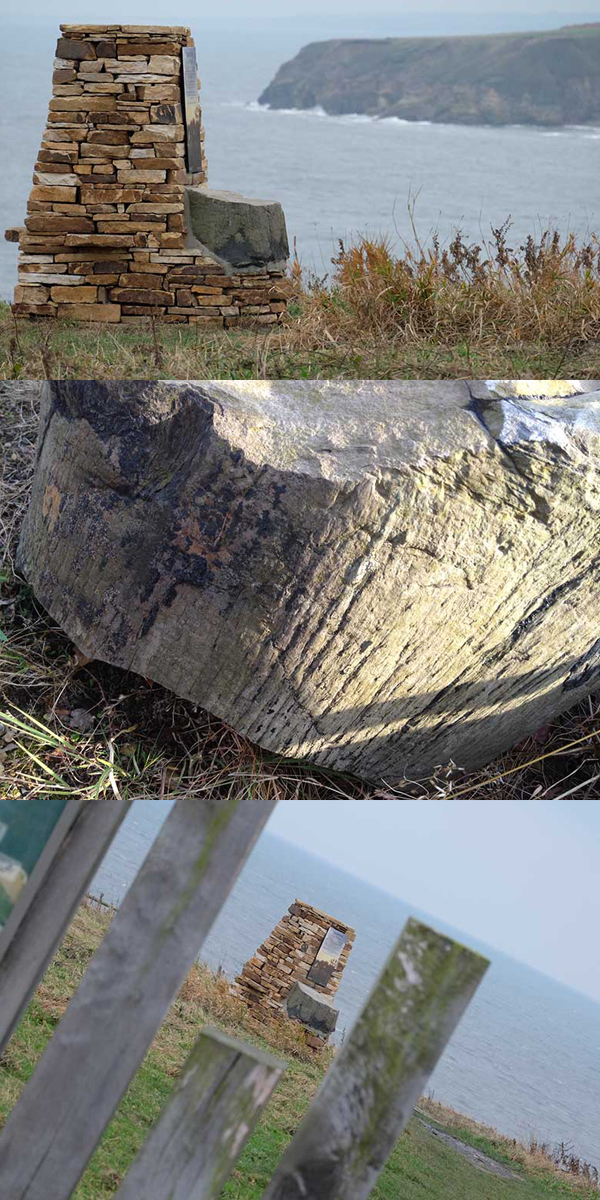 Fossil Tree Interpretation