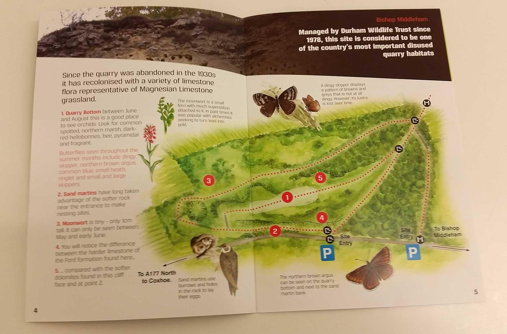 quarry-leaflet-8.jpg