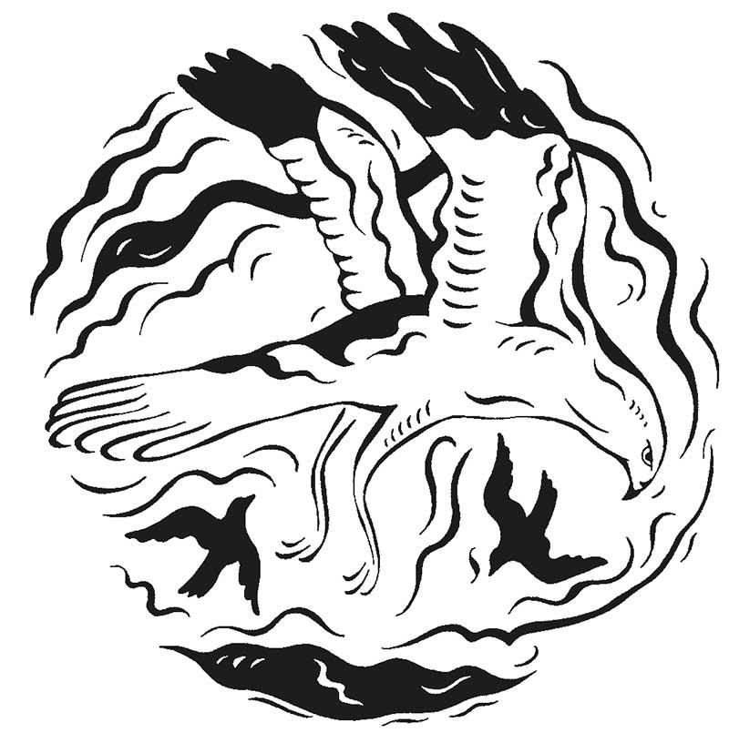hen-harrier-tactile-disc.jpg