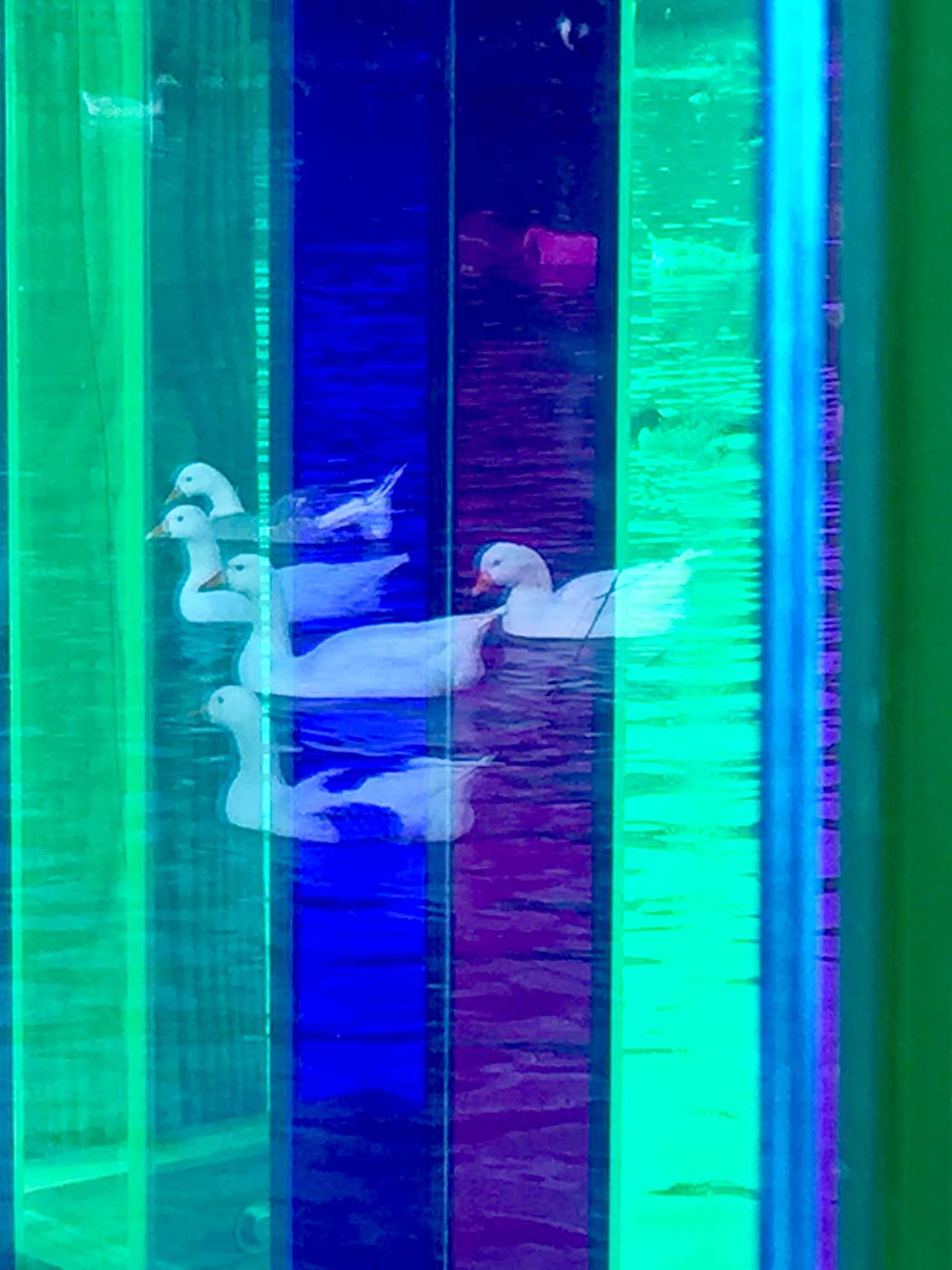rainbow-bridge-12.jpg