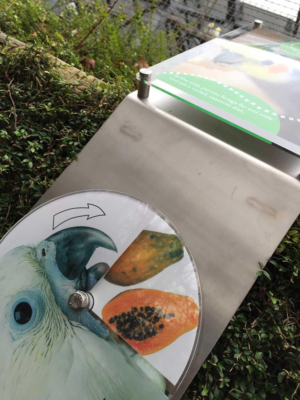 aviary-interactive-3.jpg