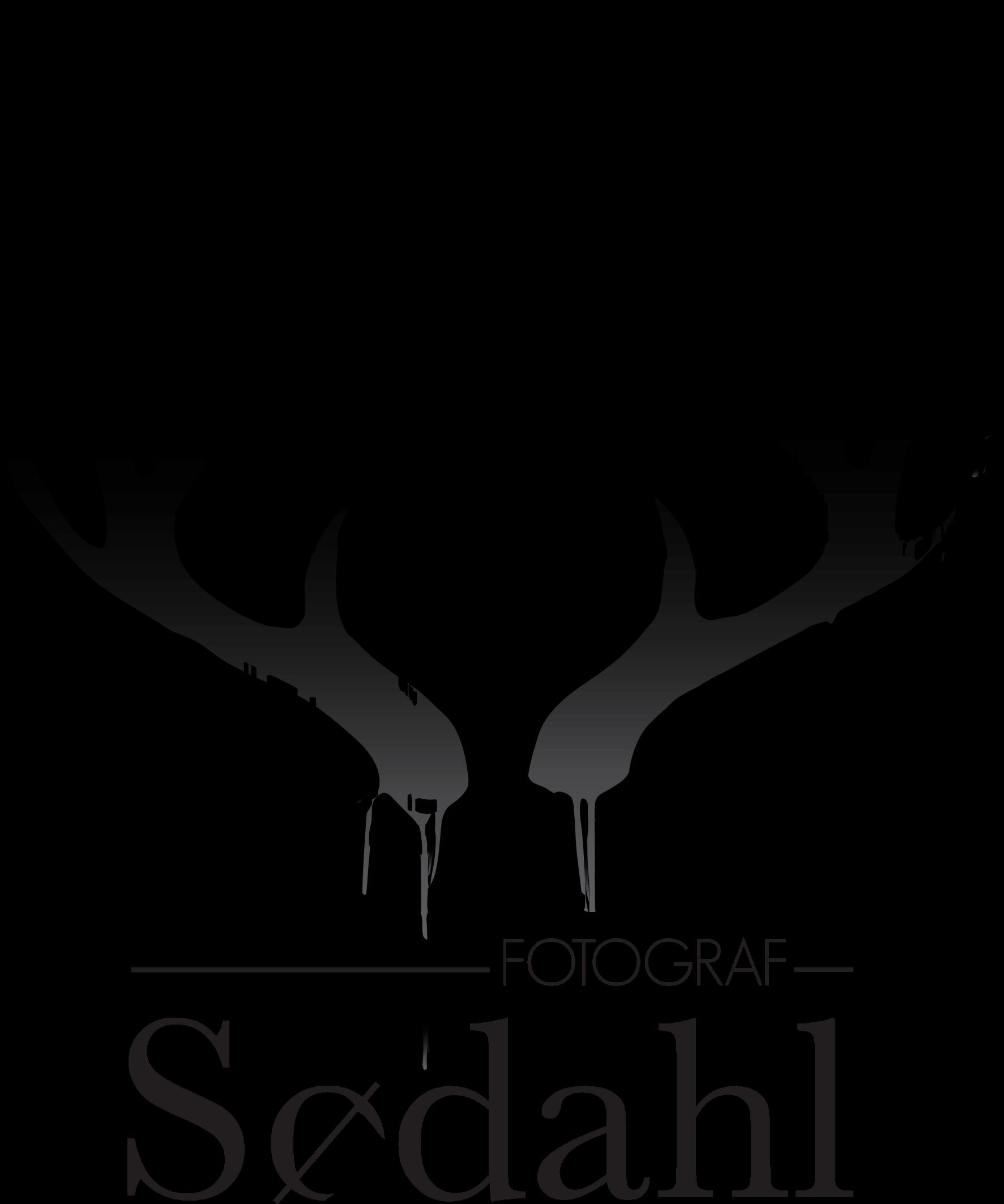 fotograf sødahl siri logo