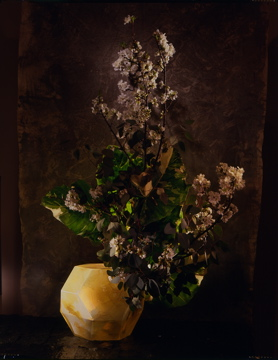 Flowers in Mecon '92.jpg