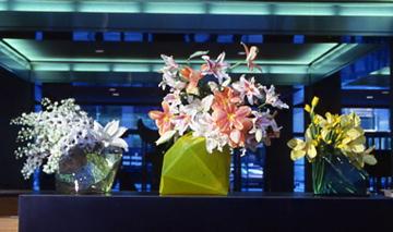 MOMA Install'88.jpg