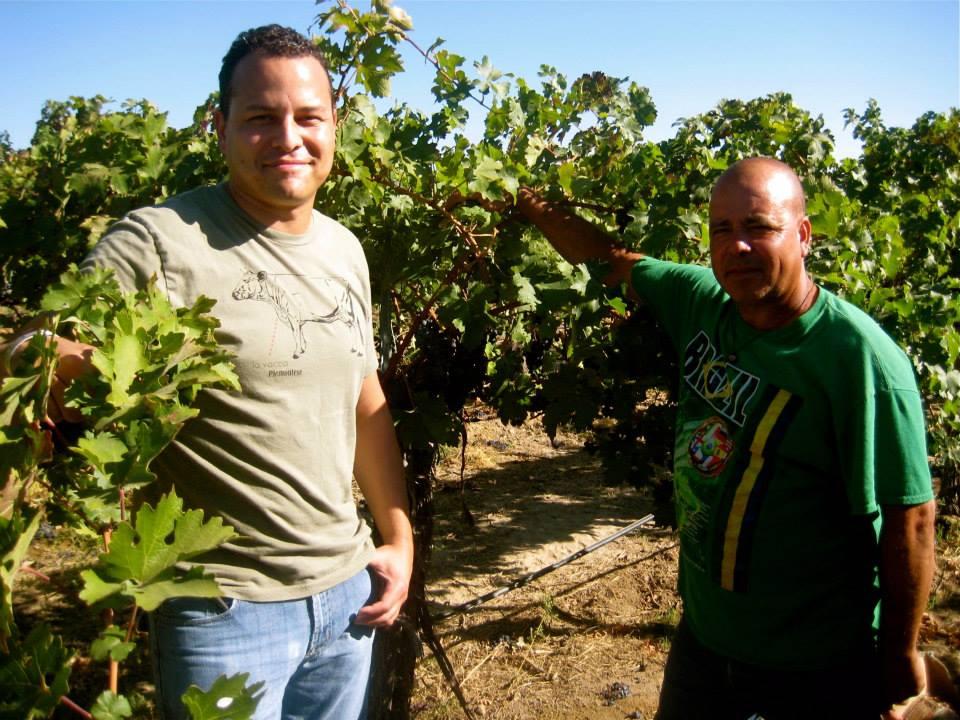 brad vineyard.jpg