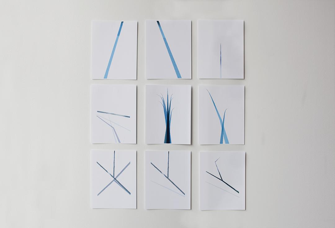 Blue Lines ALL-0923.jpg