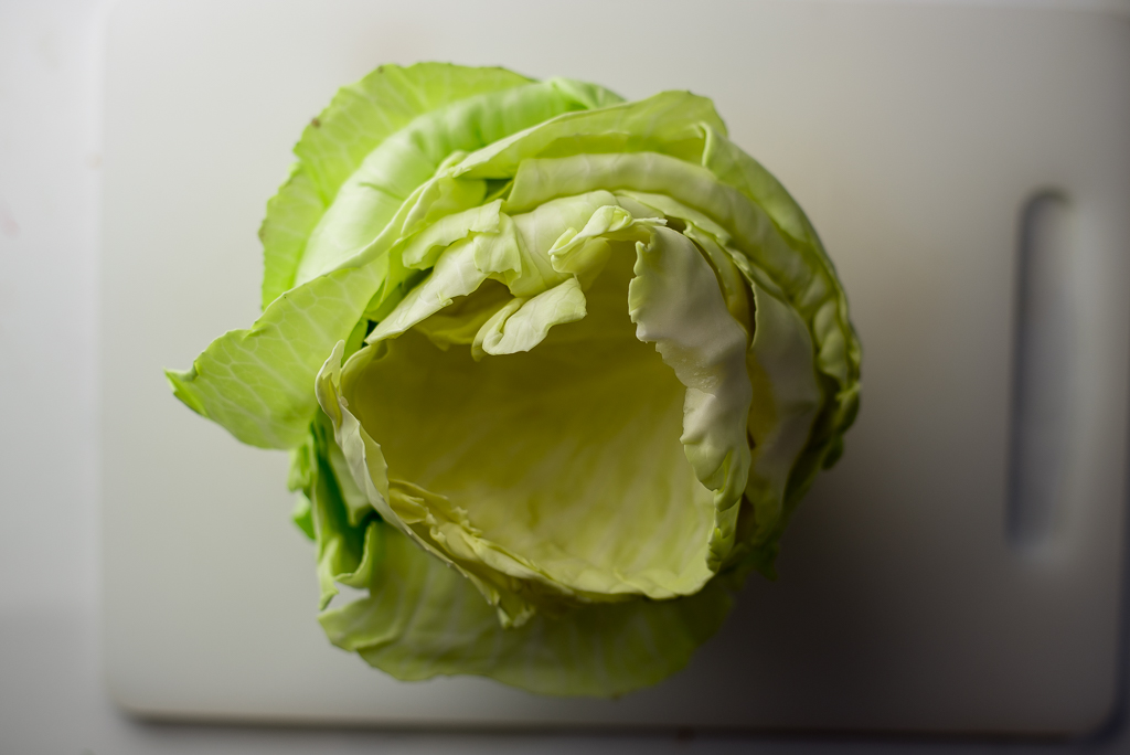 Oh beautiful Cabbage and your leaves