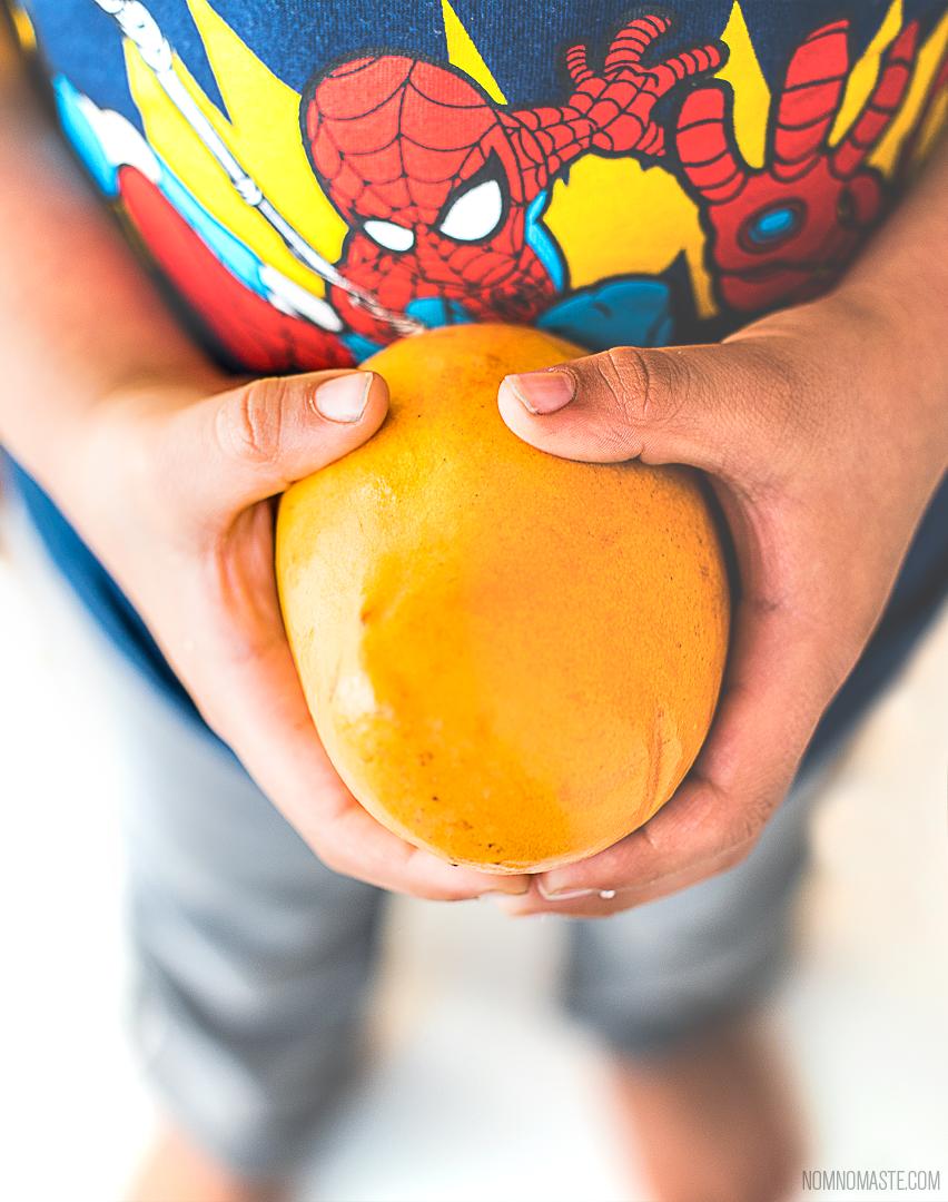 Mango-Vanilla-Cardamom-Vegan-Energy-Protein-Smoothie_1_Nomaste