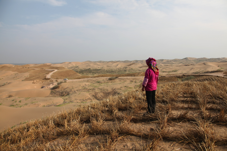 9_Ningxia_Desert.jpg