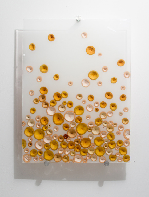 Fizz (Yellow), 2012