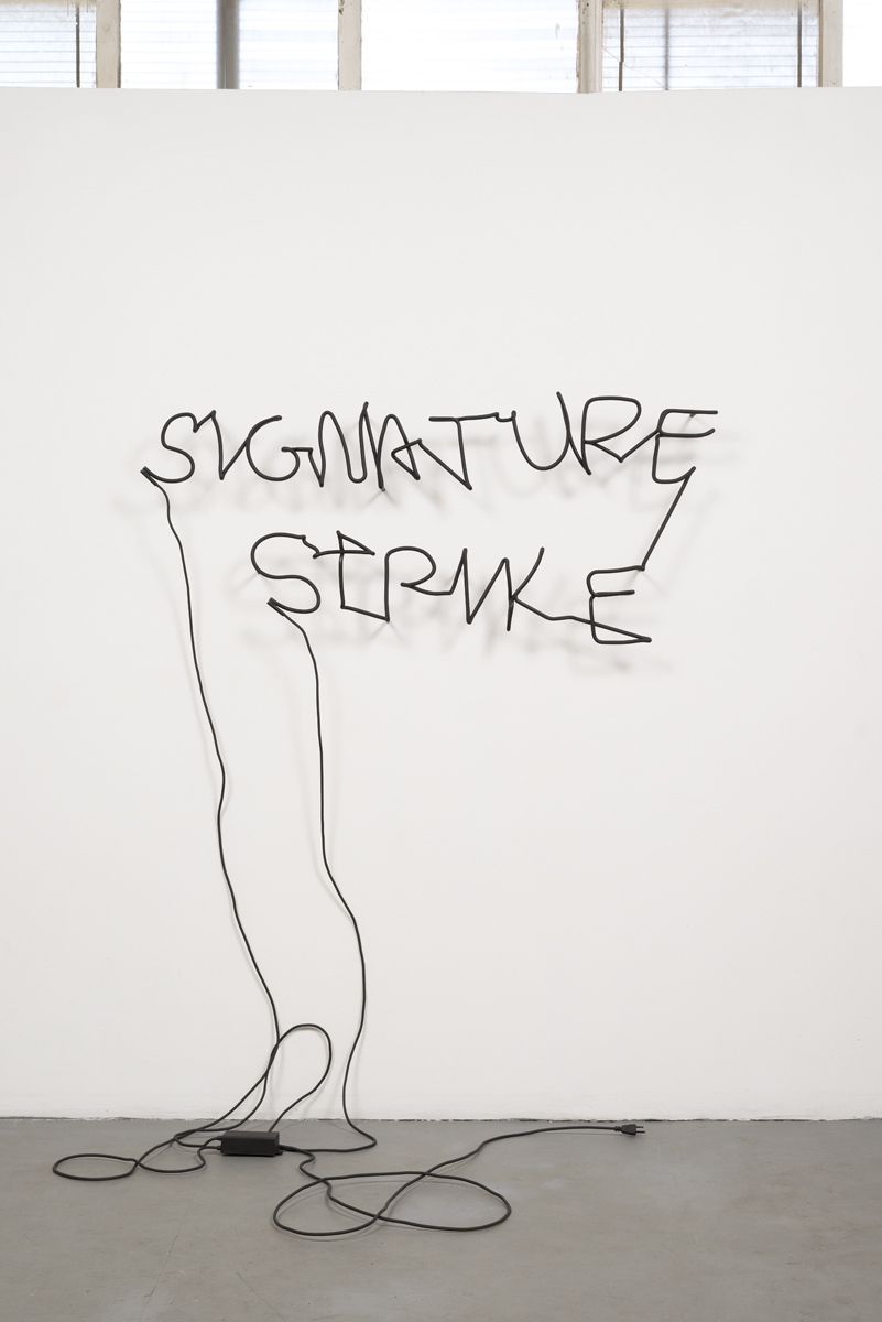 Signature Strike 1.jpg