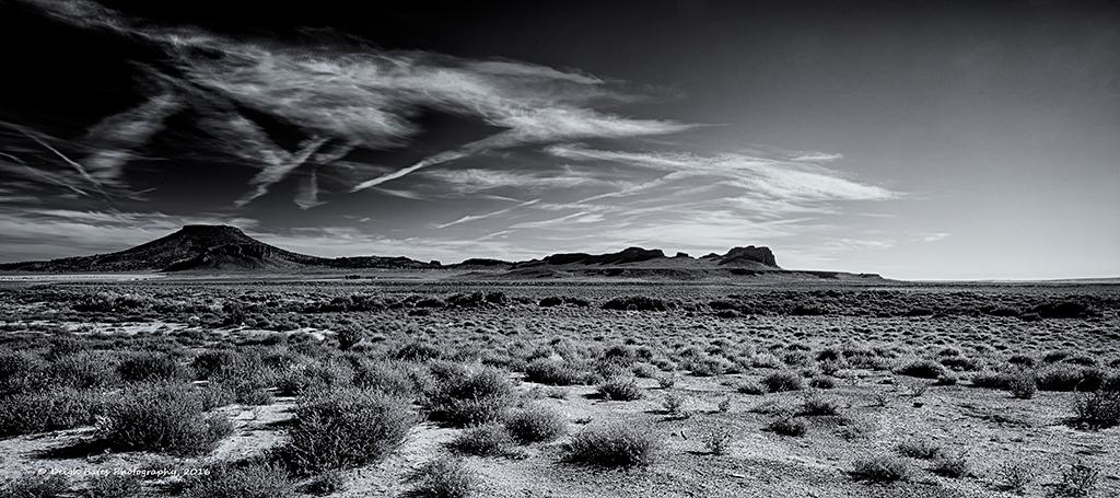 """""""Dancing Desert"""" by Deigh Bates"""