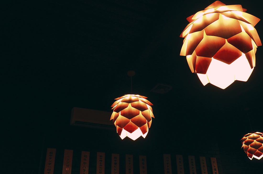 Wagyu Ya Japanese Restaurant South Yarra Toorak Review - Interior
