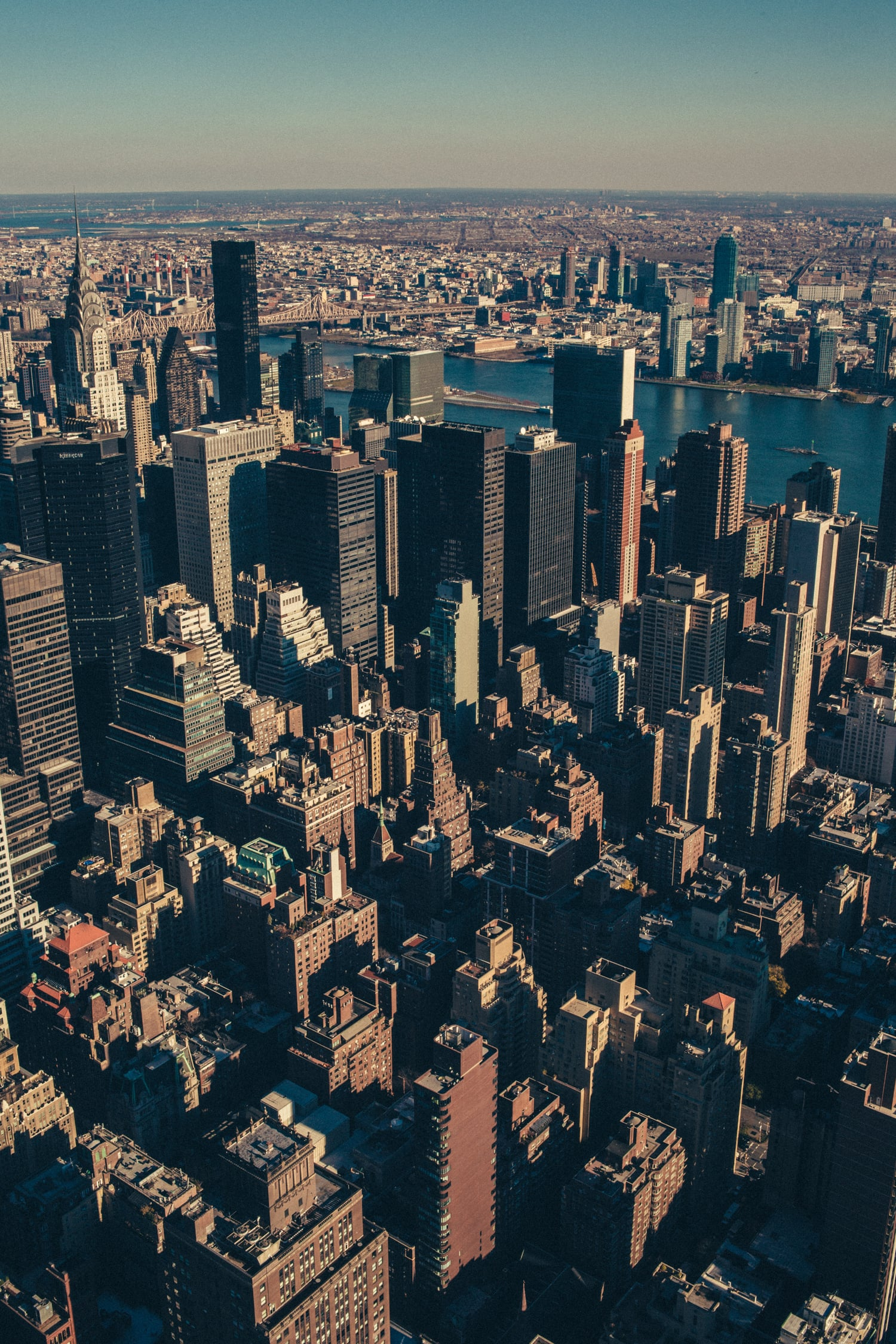 Tigercaster-NYC-Web-1637.jpg