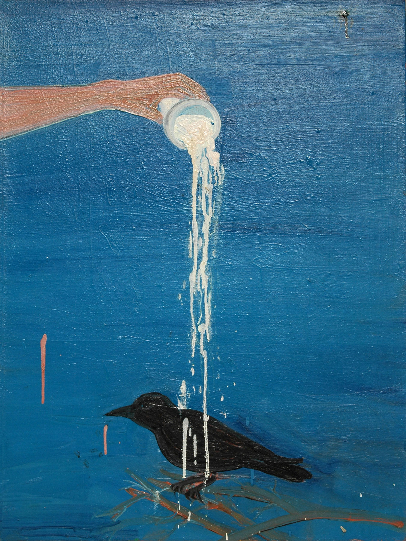 Raven Laundering, 2009    Oil on canvas, 48x66 cm