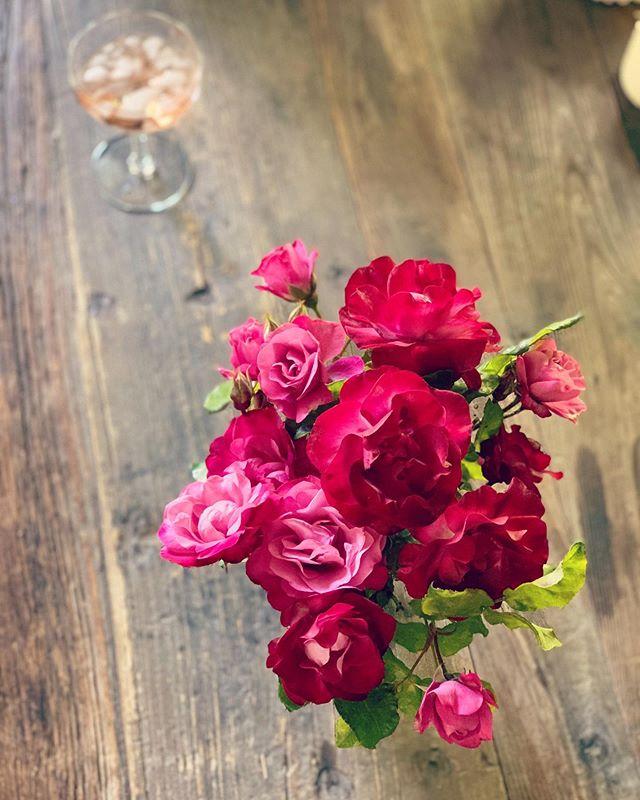 #rose or #rosé or both ? / #gardenroses #rosémaker #winemaker #napa #rosethistlerosé