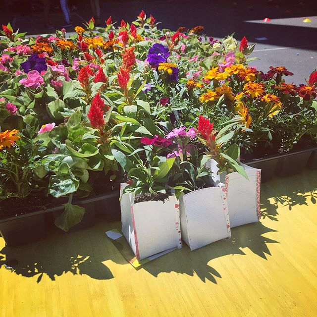 Make a recycled planter  #steamfair2019 TODAY 11-4 Prospect Av & 7th Av Bklyn